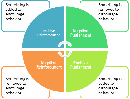operant conditioning cycle